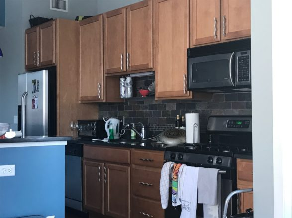 Chicago Urban Kitchen Remodel - before picture